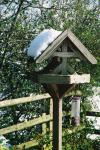 Birdtable, back garden